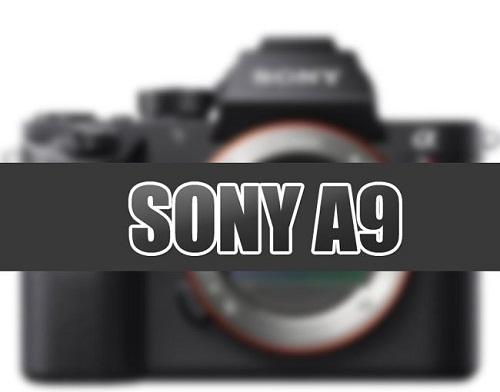 Máy ảnh Sony A9 sắp xuất hiện