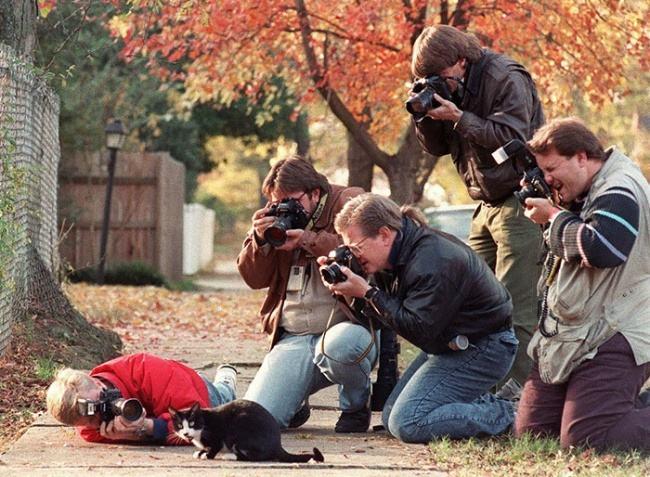 Những bức ảnh hài hước khi các nhiêp ảnh gia tác nghiệp
