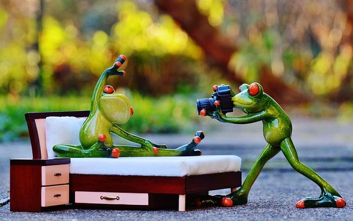 """""""Té ghế"""" với bộ ảnh khi ếch làm nhiếp ảnh gia"""