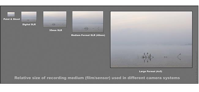 Liệu cảm biến Medium Format có phải là giới hạn?