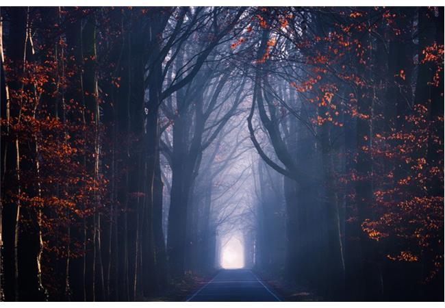 7 bức ảnh mang nét đẹp riêng dù được chụp tại cùng một chỗ và lời khuyên từ chính tác giả