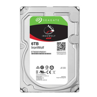 Ổ Cứng Seagate 6TB IronWolf Server SATA 6Gbps/256MB Cache/7200rpm/3.5 ST6000VN00